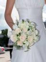 В Запорожье впервые пройдет Парад невест