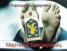 Украина подготовилась к могилизации-2015! - ВИДЕО