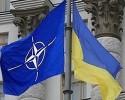 Всему миру полегчало после отказа Украины от НАТО