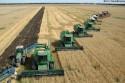 Комбайны вне закона - запрещена эксплуатация сельхозоборудования