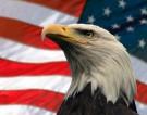 Тим Керби: В США невозможна революция, потому что там нет американского посольства - ВИДЕО