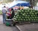 Осторожно: нас кормят нитратными арбузами из Турции!