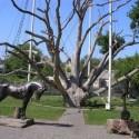 Запорожский дуб за лето посетило 25 тыс. туристов