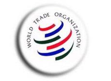 Украинские компании мало интересуются ВТО