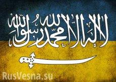 Госдеп: об участии исламистов в конфликте на Украине