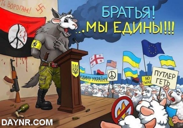 «Выборы на Украине ничего не решают, идёт передел ресурсов»