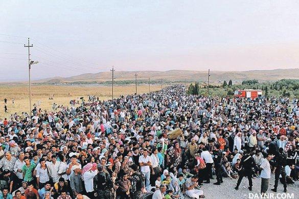 Миграционный кризис имеет характер организованного вторжения, — Земан