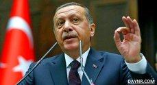 Эрдоган подтвердил уничтожение российского Су-24 турецкими ВВС