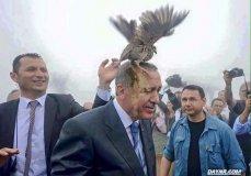 Эрдогану не следовало требовать доказательства торговли Турции с ИГИЛ (ФОТО, ВИДЕО)