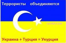 Укурция - объединение террористов Украины и Турции - Владимир Рогов - ВИДЕО