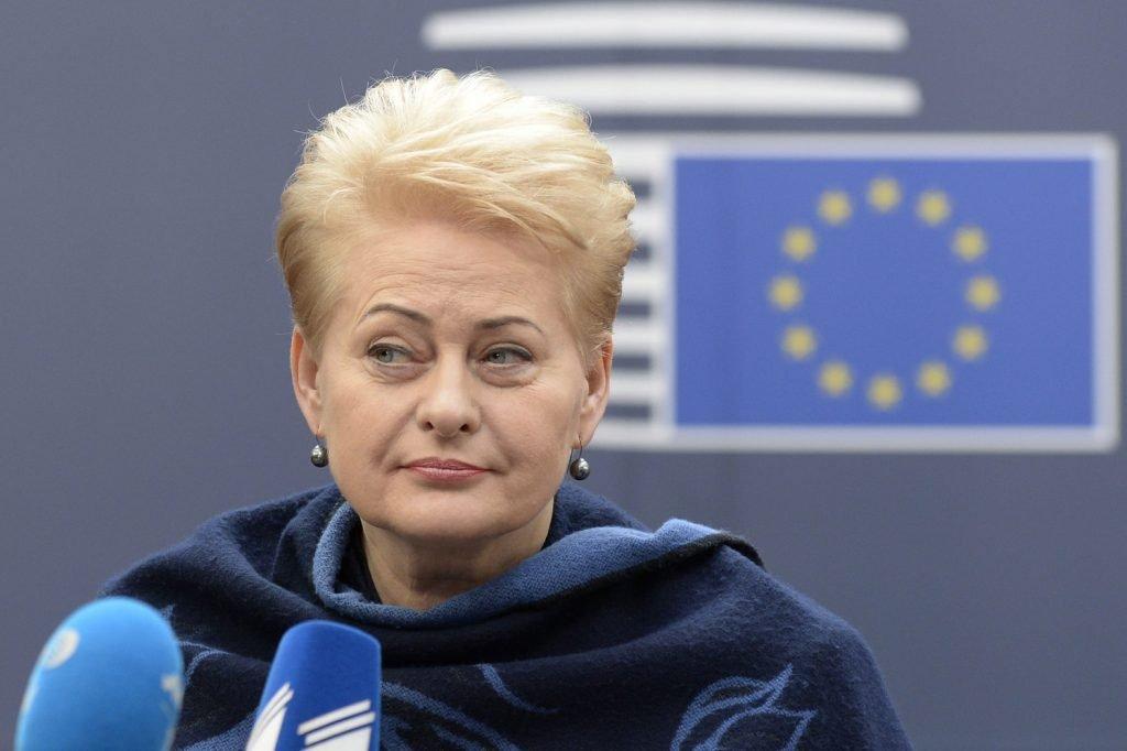 Гаспарян: Грибаускайте гордится тем, что Литва стала «страной-декорацией»