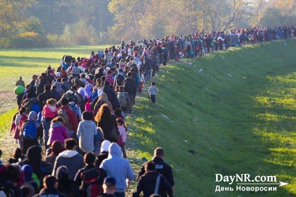 Польша отказалась принимать беженцев из мусульманских стран