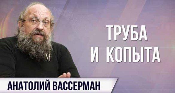 Анатолий Вассерман. Северный поток-2