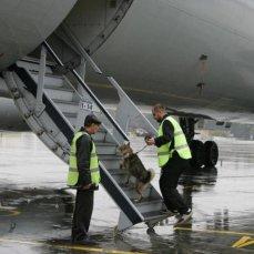 Захарова: Россия расценивает как безответственную провокацию досмотр британскими властями рейса «Аэрофлота»