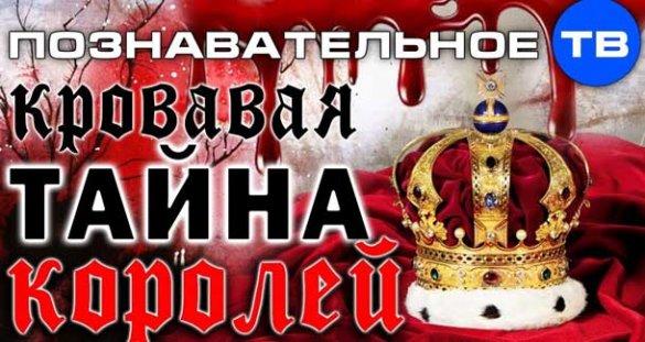 Познавательное ТВ, Артём Войтенков